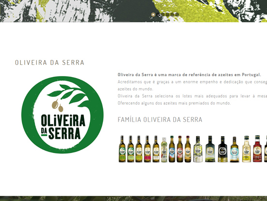 Oliveira da Serra Website